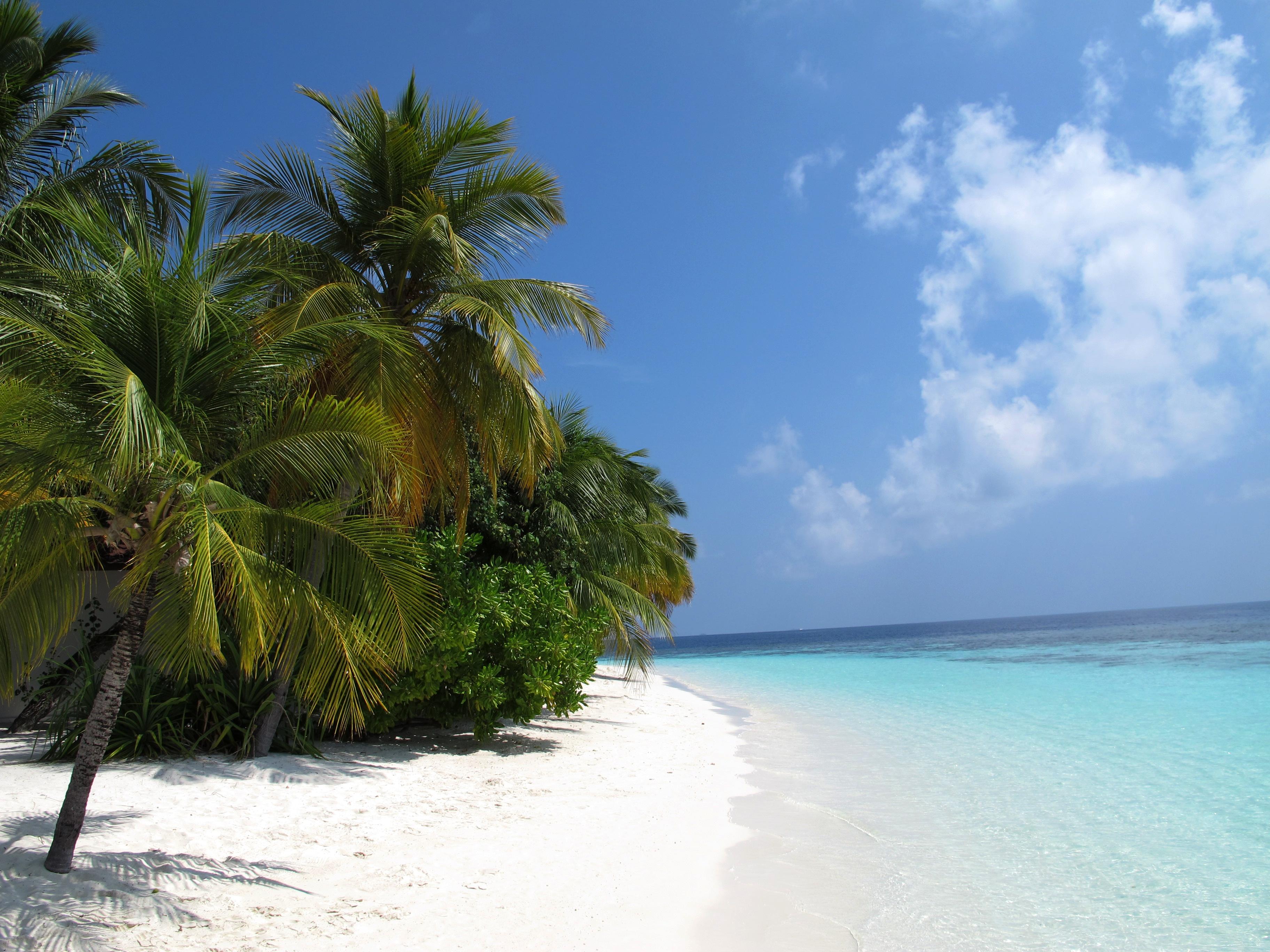 Maldives-beach